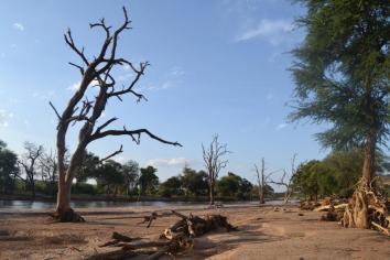 Samburu (2)