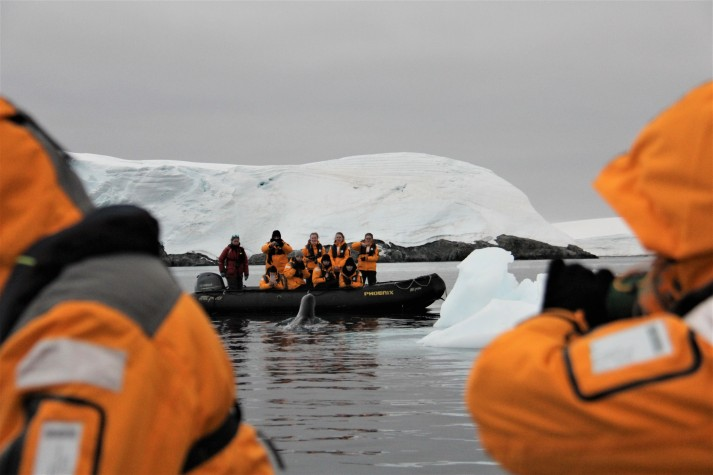 zodiac with leopard seal and iceberg